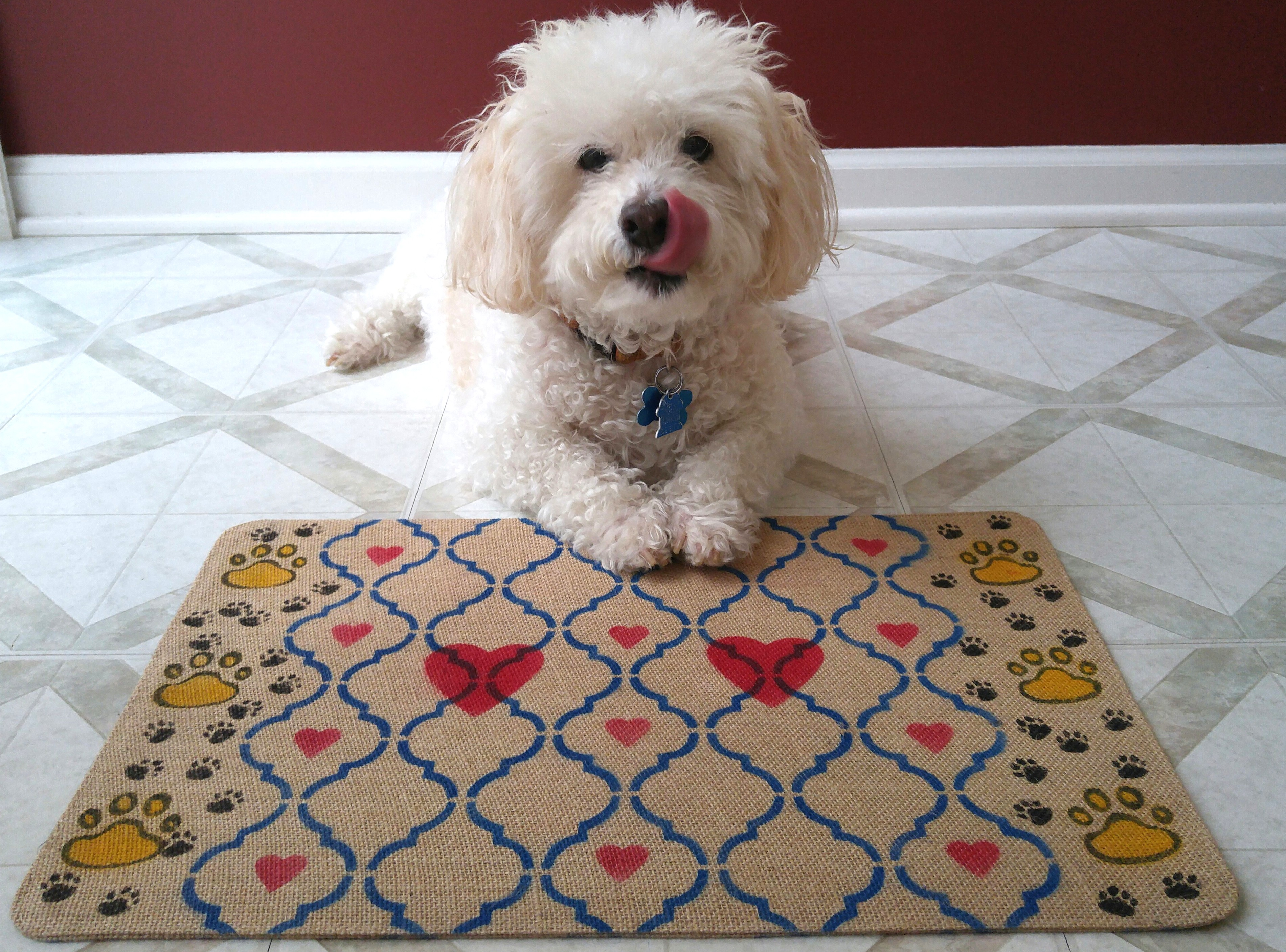 doggy-placemat-after