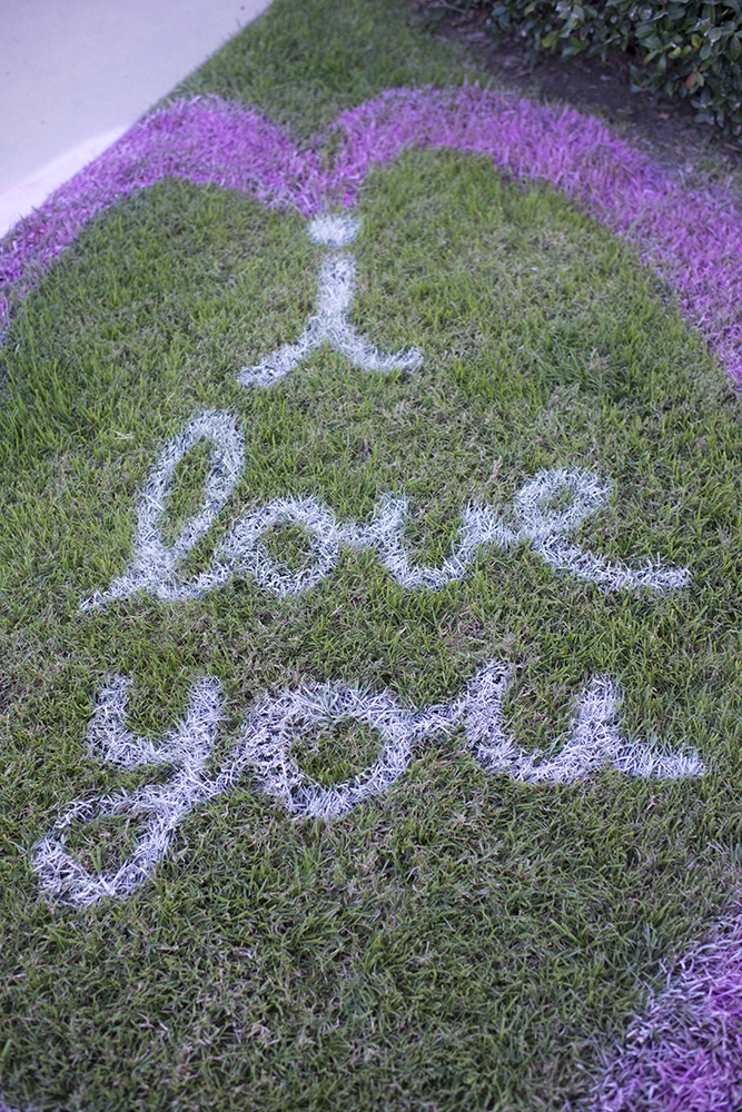 Spray Chalk I Love You Sign